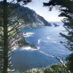 Cascade Head Trail.  One of my favorite hikes.