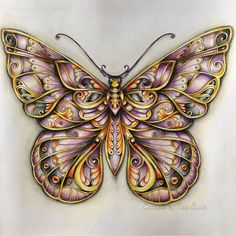 "210 Me gusta, 5 comentarios - Ness Butler (@forestlovecolouring) en Instagram: ""#johannabasford#enchantedforest#colouringkeepsmegoing#adultcoloringbook#coloring_secret#coloringmasterpiece#lovecoloring#colouringaddict#polychromospencils#magicaljungle#magicaljunglecoloringbook#butterfly#"""