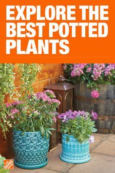 The Home Depot has everything you need for your home improvement projects. Click to learn more and shop available home and garden products.