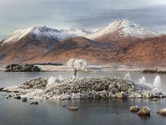 Landscape Photographer of the Year awards Rannoch Moor, Scottish Highlands