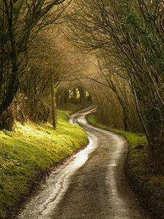 Down ancient tracks (Wales, UK) by Ros Baylis cr. Beautiful Roads, Beautiful Landscapes, Beautiful Places, Long Way Home, Back Road, Roadtrip, Pathways, Amazing Nature, The Great Outdoors