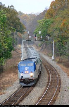 RailPictures.Net Photo: AMTK 12 Amtrak GE P42DC at Charlottesville, Virginia by William Duvall