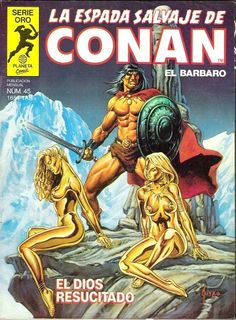 La Espada Salvaje de Conan El Bárbaro / Nº45 portada / El Dios Resucitado (Joe Jusko)