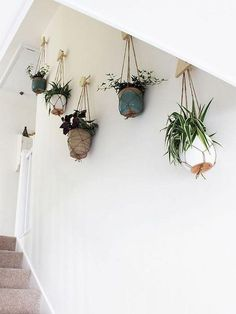 Best indoor living wall plants of hanging planters growing spaces home improvement . Plantas Indoor, Hanging Planters, Hanging Plant Wall, Indoor Hanging Plants, Planter Pots, Hanging Flower Wall, Concrete Planters, Hang Plants On Wall, Plants On Walls