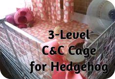 *Hedgehog Cage Tour & How to Build a C&C Cage for hedgehog