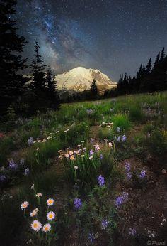"""Mt Rainier, WA. """"Starry Night"""" by Protik Hossain."""