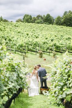 Grape Stomping has become one of our most popular wedding traditions at Potomac Point Winery.  On a day of so many firsts, how fun is it to do this together for the first time?!  Venue: potomacpointwinery Photographers: kassielayne, aliraehaney   Styled Shoot Coordinator: klaynestyled Gown: avalaurennebride Florist: bergeronsflower Beauty: evergreenbeauty.nova & magnificent_mane17 Tuscan Style, East Coast, Old World, Vows, Bride Groom, Real Weddings, Photographers, Wedding Photos, Popular