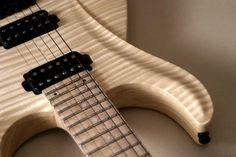 frank hartung guitars - Google Търсене