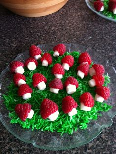 Raspberries, mini marshmallows and coloured sweetened shredded coconut for the grass