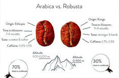 Jaký je rozdíl mezi #arabicou a #robustou?