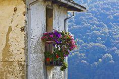 Aurano, Piedmont, Italy