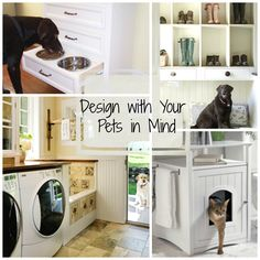 Design with your pets in mind