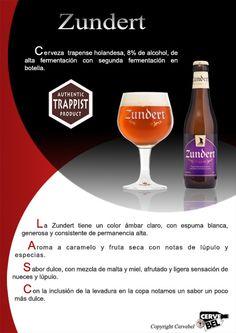 Cerveza trapense holandesa, 8% de alcohol, de alta fermentación con segunda fermentación en botella. Cervebel