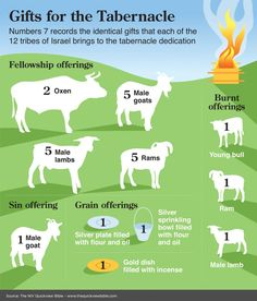 The Quick View Bible » Gifts for the Tabernacle This graphic could be really helpful when teaching children about the Tabernacle. Free lesson at http://missionbibleclass.org/old-testament-stories/old-testament-part-1/exodus-through-12-spies/the-tabernacle/