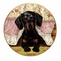 Peek-a-Boo Collector Plate by Christopher Nick - The Danbury Mint