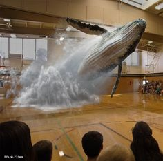 Magic Leap is the company that has the tech world abuzz. Learn why at http://www.ifitshipitshere.com/magic-leap-is-just-that-magic/