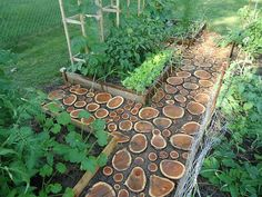 How to turn wood logs and tree stumps into unique accessories!  Diy garden paths of  wood slabs