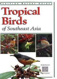 Tropical Birds Of Southeast Asia PDF