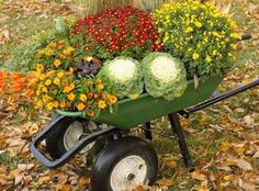 Fall Decor: Wheelbarrow filled with mums, pansies and other seasonal flowers.