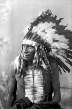 Cheif White Bull, Lakota 1891