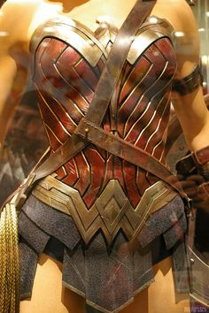 Wonder Women Dawn of Justice Costume