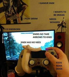 Skyrim and snek. Cute Funny Animals, Funny Cute, Hilarious, Cute Reptiles, Reptiles And Amphibians, Terrarium Reptile, Cute Snake, My Guy, Animal Memes