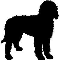 Image result for goldendoodle silhouette