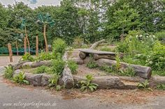 So sieht es aus, wenn öde Schulhöfe in lebendige Naturerlebnisräume umgewandelt werden. (Naturerlebnisraum Naturgarten Schulhof Gotthard-Kühl-Gemeinschaftsschule wildife garden)