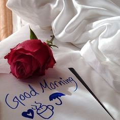 you are searching for good morning beautiful massages. The best image is available on this website to wish you good morning. Free Good Morning Images, Good Morning Photos, Good Morning Messages, Morning Pictures, Good Morning Roses, Good Morning Good Night, Beautiful Morning, Morning Love Quotes, Morning Greetings Quotes