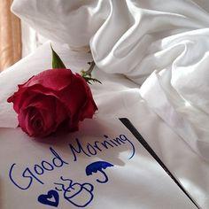 ~ Good Morning ~