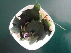 zupka z liści :)