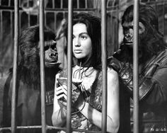 Nova (Linda Harrison) is ogled by gorilla handlers on the Planet of the Apes Linda Harrison, Fiction Movies, Science Fiction, Cathedral City, Planet Of The Apes, Miss America, Horror Films, Horror Art, Scary Movies
