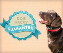 Find a place to stay while you're away OR offer your home and pet sit and make some extra money at dogvacay.com