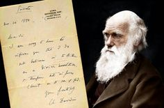 A private letter in which Charles Darwin admits to being an atheist has sold for £125,000 at Bonhams auction in New York on Monday.