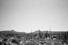 A collection if images via Baja Sur // Viajando con mis amigos