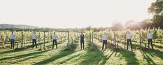 Rustic wedding venue - Aldwick Court Farm and Vineyard