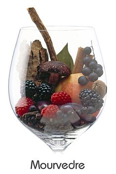 Mourvèdre #taninotanino #vinosmaximum