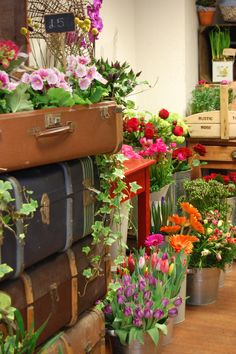 Rustic Rose Shop in England - love the suitcase props