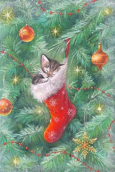 adorable vintage Christmas kitten More