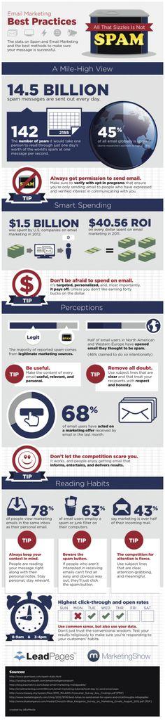Email Marketing: Wat zijn de best practices? - I ❤ Infographic Friday