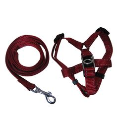 """Set including a dog leash and retractable chest harness with metal hook, D-hook, plastic detachable buckle,adjusting buckle. This set includes one leash and one chest harness, Made of nylon webbing.  The leash measures .78"""" w x 49"""" L and the harness measures .78"""" x (adjusts to 15.7 22.8"""" ).  Your logo and custom sizes are welcome."""