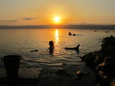 The Dead Sea is an extraordinary body of water. Here's my experience of floating in the Dead Sea, including my recommended place to stay. Dead Sea Israel, Jordan Travel, Le Moulin, Travel Ideas, Travel Tips, The Good Place, Egypt, Travel Destinations, Sunrise
