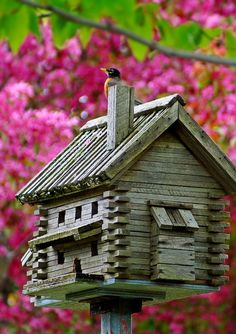 Log Cabin Birdhouse Flowers...