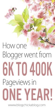 Video Interview of Katelyn Fagan from What's Up Fagans? blog about how she grew her blog from 6K to 400K pageviews in a year!