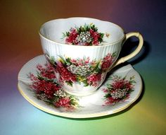 Royal Albert Blossom Time Series Hawthorn Tea Cup and Saucer Set