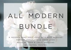 $3 This Week Only - All Modern  by InkMeThis on @creativemarket
