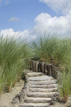 Ideas Zen Patio Garden Paths For 2019