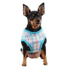 Kayla Pinka Wrap Dog Harness by Pinkaholic - Blue