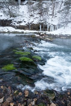 Winter at Roaring River State Park   Missouri State Parks
