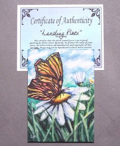 Original ACEO Butterfly Daisy Flower Field Miniature Watercolor Reinecke COA #Miniature